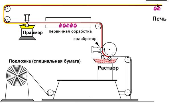image5.jpeg